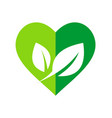 green leaf love organic nature logo vector image vector image