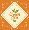 label for green tea with sprig of tea and teapot vector image vector image