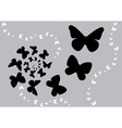 butterfly black s vector image vector image