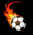 flaming football soccer ball vector image vector image