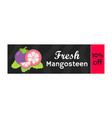 mangosteen on sale whole purple fruit coupon vector image vector image