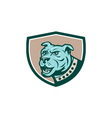 Mastiff Dog Mongrel Head Side Crest Cartoon vector image vector image