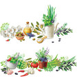 banners with aromatic herbs in pots and vegetables vector image vector image