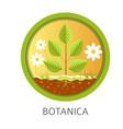 botanica school discipline informational lessons vector image vector image