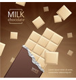 chocolate package bar blank - white pieces vector image vector image