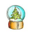 snow globe with decorated fir-tree souvenir color vector image vector image