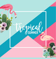 tropical cactus and flamingo birds summer banner vector image
