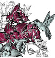 background with orchids and hummingbird vector image vector image