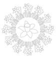 black and white circular spring mandala daffodil vector image vector image