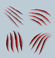 claw scary scratches with blood tiger claws vector image