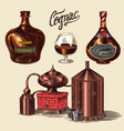 cognac and glass bottles with labels cigar and vector image