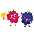 Cute funny comic style raspberry and blackberry vector image