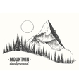 Fir forest mountain drawn vector image vector image
