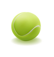 light green ball for tennis vector image vector image