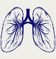 Lungs person vector image vector image