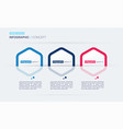 modern infographic concept template three vector image vector image
