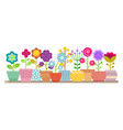 spring and summer flowers in pots vector image vector image
