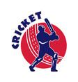 cricket batsman background vector image vector image