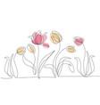 drawings of flowers vector image