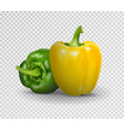 realistic sweet pepper 3d vector image vector image