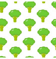 seamless pattern with broccoli in flat style vector image