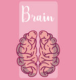 brain and intelligence concept vector image