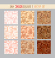 censorship pixel squares vector image vector image