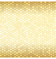Luxury template for card or invitation vector image vector image