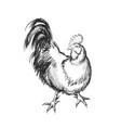rooster hand drawing vector image vector image