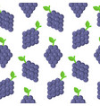 seamless pattern with grapes in flat style vector image