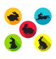 Set of rabbits in different positions vector image