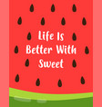 summer card with watermelon and lettering vector image vector image