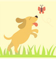 cute playing dog character vector image