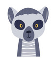 lemur cute animal baby face vector image vector image