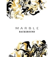Marbling texture background Abstract marble design vector image