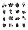 berries icons set simple style vector image vector image