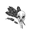 black and white crow skull with feathers bird vector image