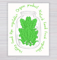 hand drawn poster with jar full of spinach with vector image vector image