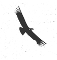 Flying condor silhouette on the white background vector image