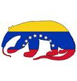 Anteater Venezuela vector image