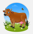 cartoon brown cow on green meadow vector image vector image