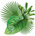 chameleon on tropical leaves white background vector image