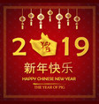 chinese new year 2019 and the year of golden pig vector image