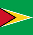 flag in colors of guyana image vector image
