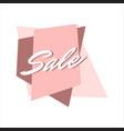 pink sale lettering special offer promomotional vector image
