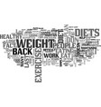 why dont diets work text word cloud concept vector image vector image