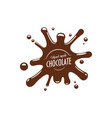 chocolate splash confectionery icon vector image