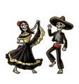 day of the dead dia de los muertos the skeleton vector image