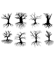 Bare tree silhouettes with roots vector image vector image