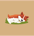 funny little corgi sleeping on green lawn cartoon vector image